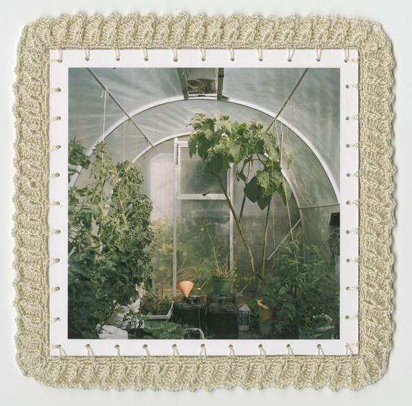 Greenhouse (2008/09)