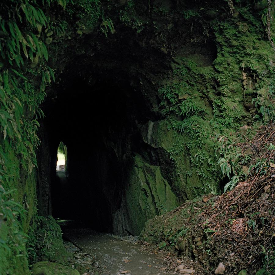 Rohe of Ngāi Tahu.